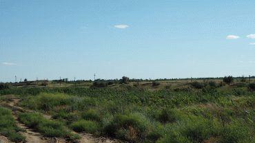 Договор аренды земельного участка с правом выкупа
