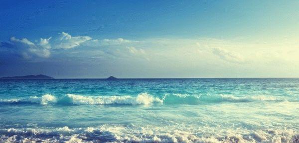 Алименты с отпускных удерживаются или нет